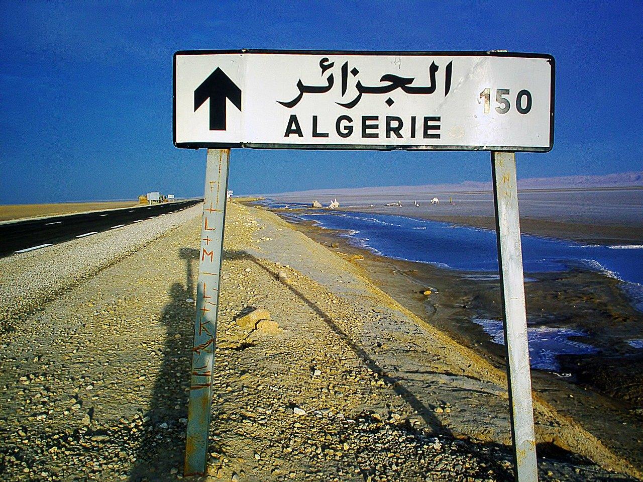 History Of Bubble Algeria In Hindi | बबल अल्जीरिया का इतिहास